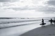 Surf n°3
